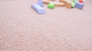 掃除もしやすい!サラサラしたフラットなカーペット