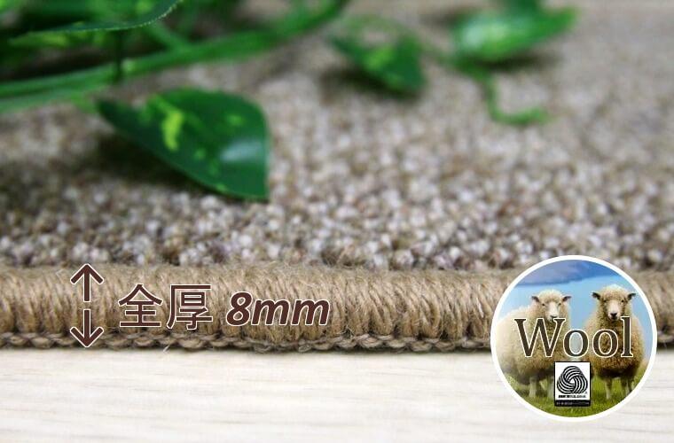 毛(新毛):100% 粒の大きさ 約2~3mm ループパイル:6mm/全厚8mm