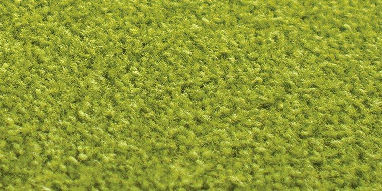 美しいグリーン系のカーペット
