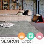 遊び毛防止 床暖房対応 サイズオーダー【5色】 ラグ『SEGRON/セグロン』の商品画像