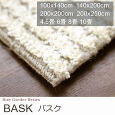 【2色】薄手のシャギー 抗菌仕様 カーペット『BASK/バスク』の商品画像