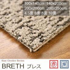【2色】遊び毛対策 防汚 消臭タイプ カーペット『BRETH/ブレス』の商品画像