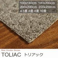 【3色】寝室タイプ モダンカラー カーペット『TOLIAC/トリアック』の商品画像