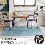 シンプルシャギー 水洗い対応【5色】 ラグ『FEENO/フィーノ』の商品画像