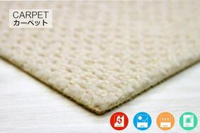 遊び毛防止カーペット「FRIPE/フライプ」の生地拡大画像