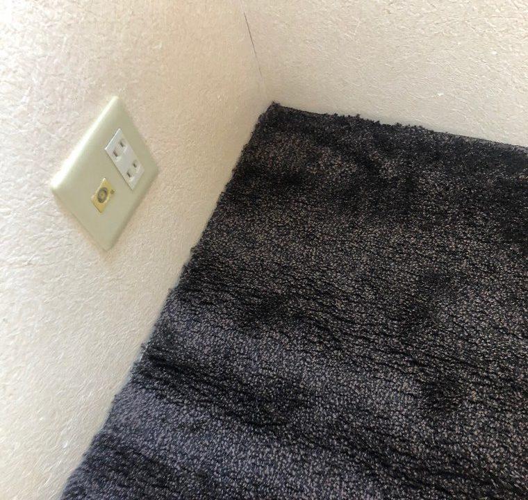 うとごさんからのカーペット  MOUSSE/ムースの投稿写真
