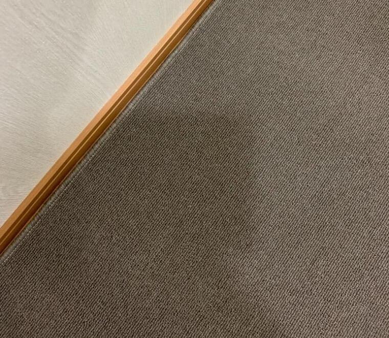 souさんからのカーペット 薄手  MUVA/ムーヴァの投稿写真